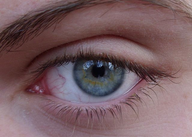 640-640px-Same-eye